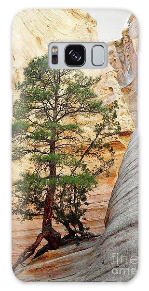 New Mexico Tent Rocks Slot Canyon Tree Landscape Galaxy Case by Andrea Hazel Ihlefeld