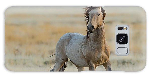 New Stallion Galaxy Case