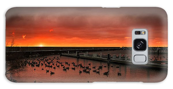 Newport Geese Galaxy Case