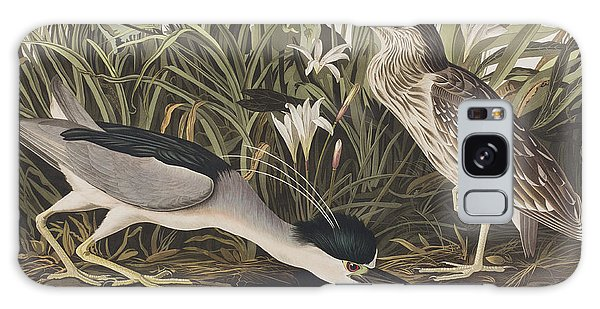 Night Heron Or Qua Bird Galaxy S8 Case