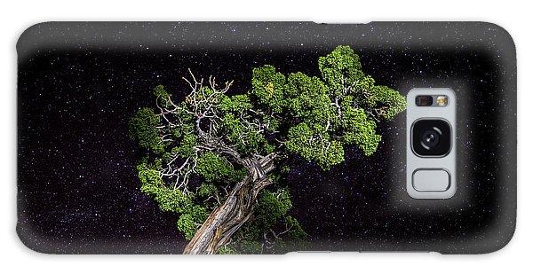 Night Tree Galaxy Case