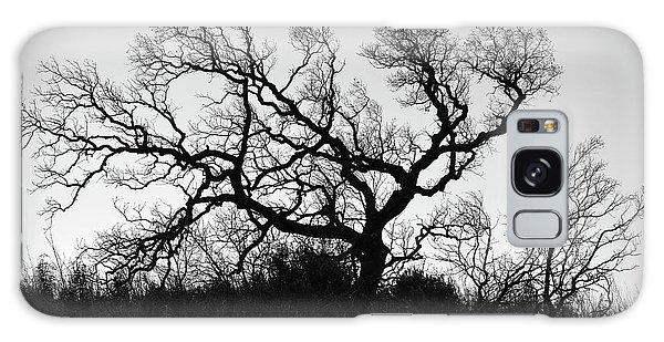 Nightmare Tree Galaxy Case