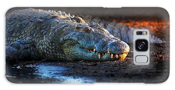 Nile Crocodile On Riverbank-1 Galaxy Case