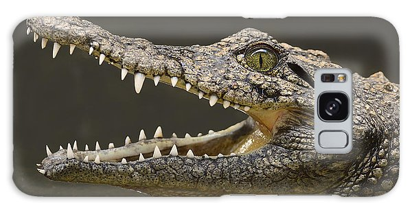 Nile Crocodile Galaxy Case