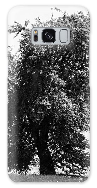 Nina Tree Dressed Out Bw Galaxy Case