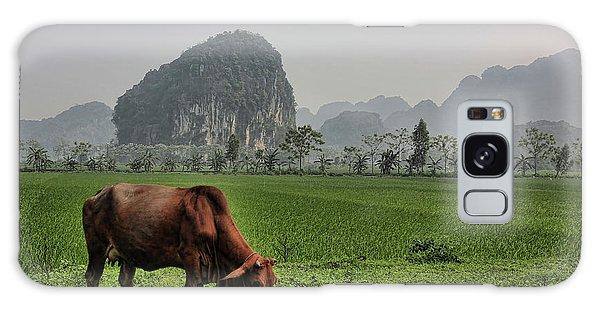 Ninh Binh Reserve  Galaxy Case