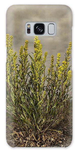 Nizina River Goldenrod Galaxy Case