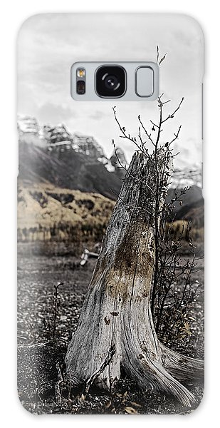 Nizina River Tree Stump Galaxy Case