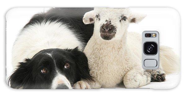 No Sheep Jokes, Please Galaxy Case