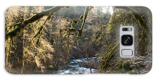 Galaxy Case featuring the photograph Nooksack River by Yulia Kazansky