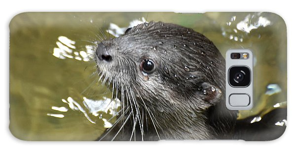 North American River Otter Swimming In A River Galaxy Case