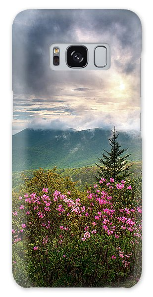 North Carolina Spring Flowers Blue Ridge Parkway Scenic Landscape Asheville Nc Galaxy Case