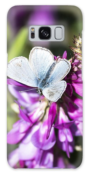 Northern Blue Butterfly Galaxy Case