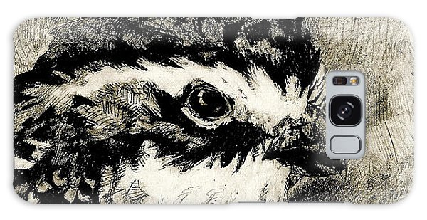 Northern Bobwhite Galaxy Case