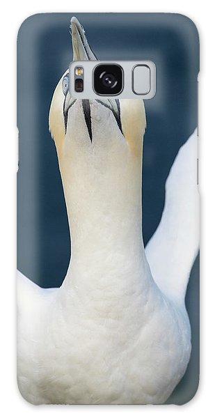 Northern Gannet Stretching Its Wings Galaxy Case