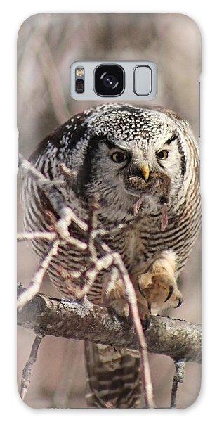 Houlton Galaxy Case - Northern Hawk Owl Having Lunch 9445 by Joseph Marquis