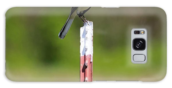 Galaxy Case featuring the photograph Northern Mockingbird Posing  by Ricky L Jones
