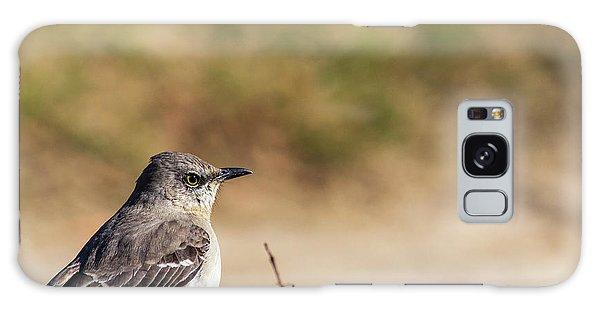 Northern Mockingbird Sitting On Top Of A Hedge Galaxy Case