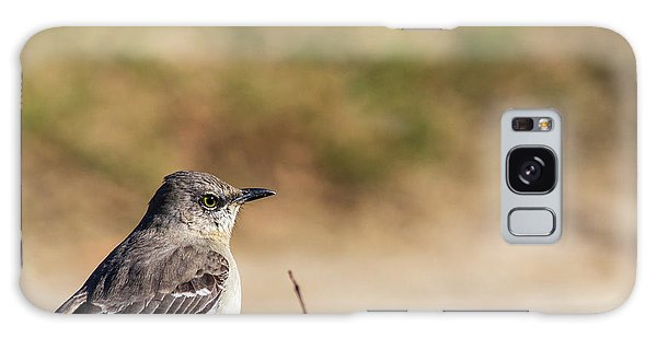 Northern Mockingbird Sitting On Top Of A Hedge Galaxy Case