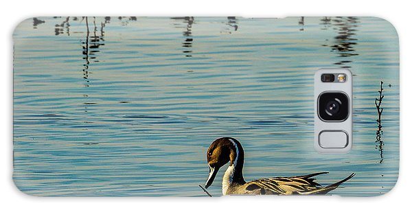 Northern Pintail At The Wetlands Galaxy Case