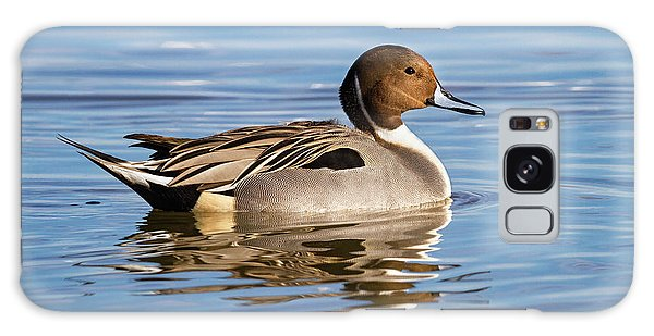 Northern Pintail Duck Galaxy Case