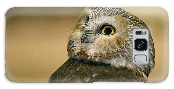 Northern Saw-whet Owl Galaxy Case