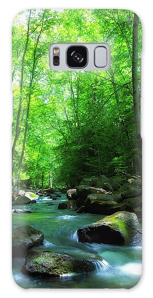 Northwood Brook Galaxy Case