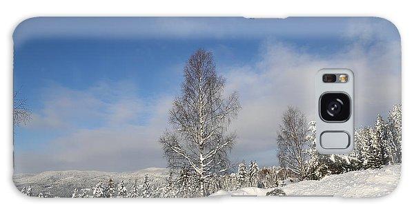 Norwegian Valley. Galaxy Case