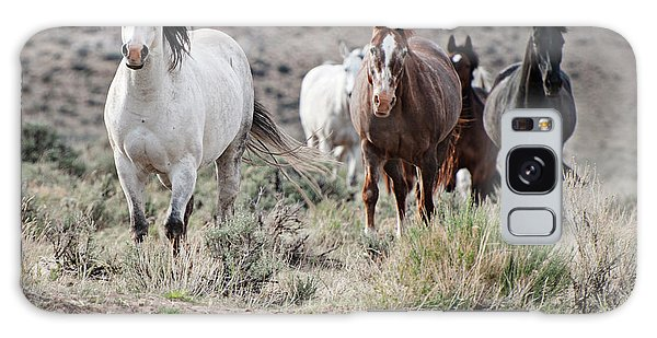 Not So Wild Horses Galaxy Case
