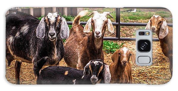 Nubian Goats Family Portrait Galaxy Case
