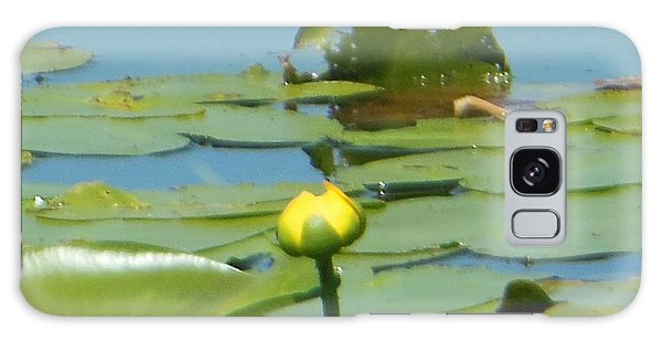 Nuphar Lutea Yellow Pond Galaxy Case