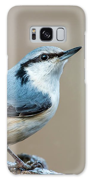 Nuthatch's Pose Galaxy Case