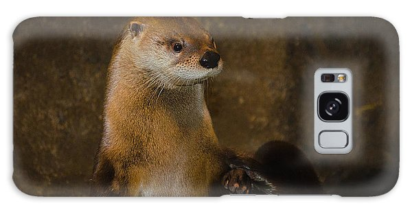 River Otter Galaxy Case - New York River Otter by Linda  Howes