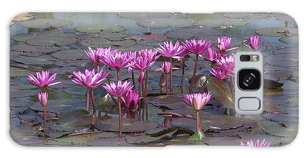 Nymphaea Water Lily Dthst0079 Galaxy Case