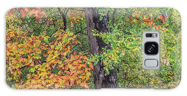 Oak Hickory Woodland Galaxy Case by Tim Fitzharris