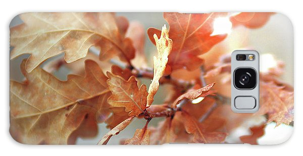 Oak Leaves In Autumn Galaxy Case