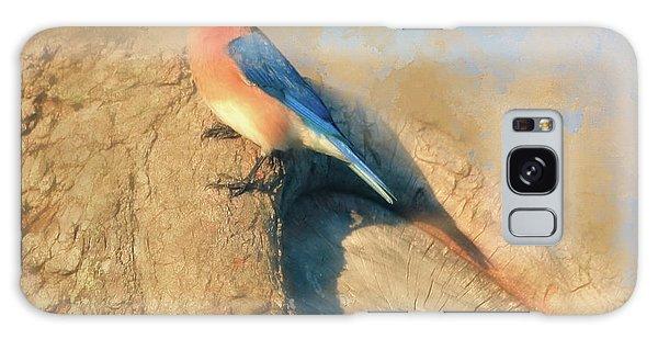 Eastern Bluebird Galaxy Case - Oak Tree Lookout by Donna Kennedy