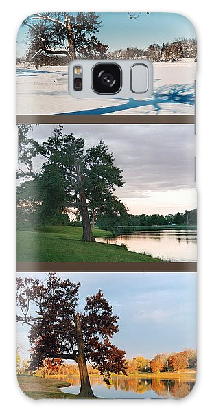 Oak Tree Through Seasons Galaxy Case