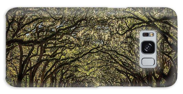 Oak Tree Tunnel Galaxy Case