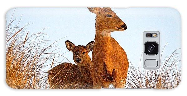 Ocean Deer Galaxy Case