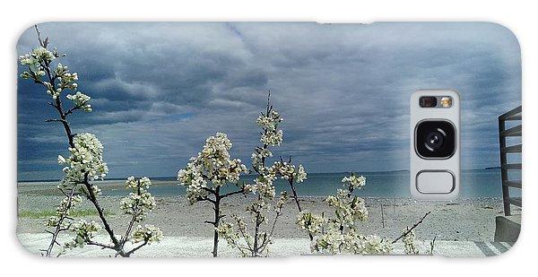 Ocean Spring Galaxy Case
