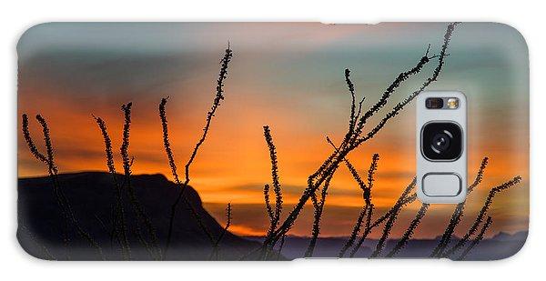 Ocotillo At Sunset Galaxy Case