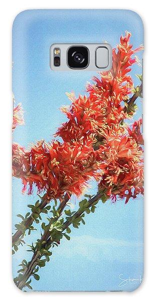 Ocotillo In Bloom Galaxy Case