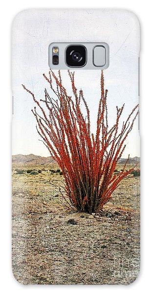 Ocotillo Plant Galaxy Case