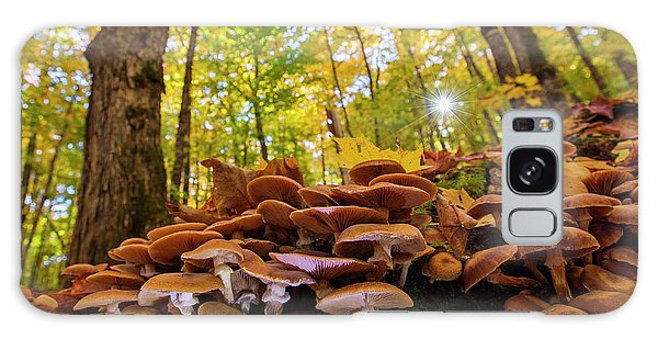 Mushroom Galaxy S8 Case - October Mushroom by Mircea Costina Photography