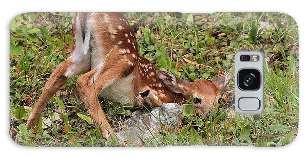 Oh Deer Little Fawn Galaxy Case