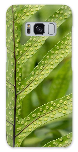 Oh Fern Galaxy Case