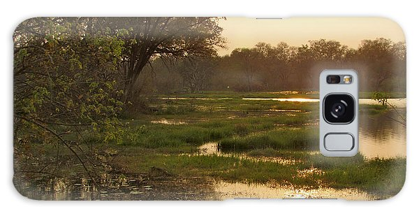 Okavango Delta Gold Galaxy Case