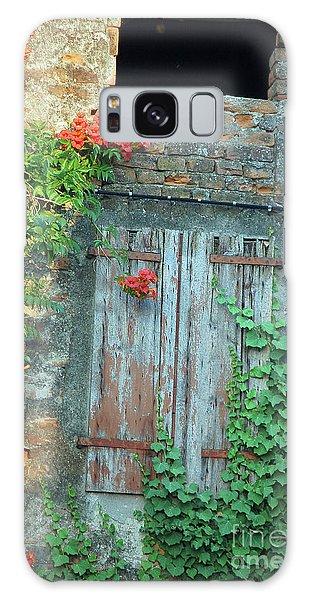 Old Farm Door Galaxy Case