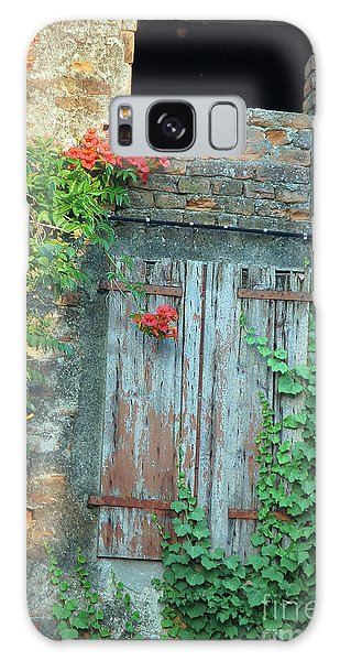 Old Farm Door Galaxy Case